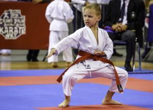 Międzynarodowy Turniej Karate 2015
